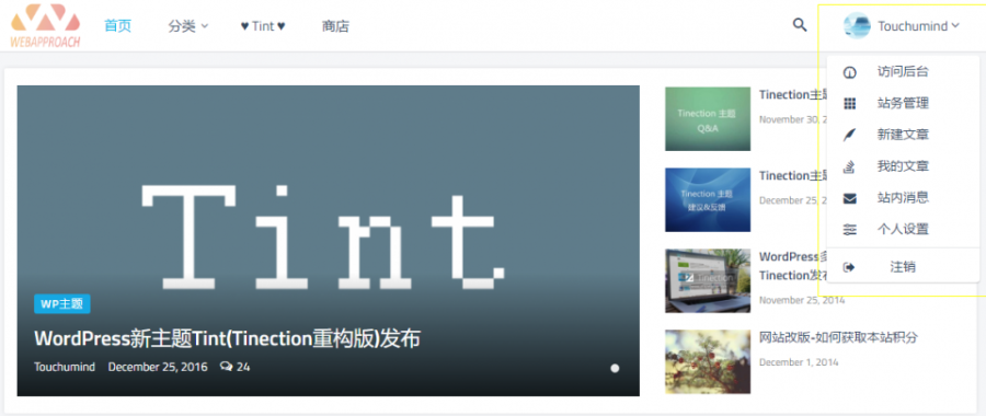 Tint主题2.5.0-Pro去授权无限制版Tinection重构版WordPress主题模板